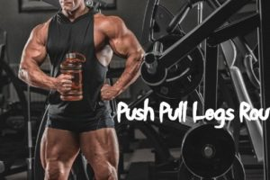 Push Pull Legs Routine PPL Workout